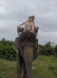 elefantriding
